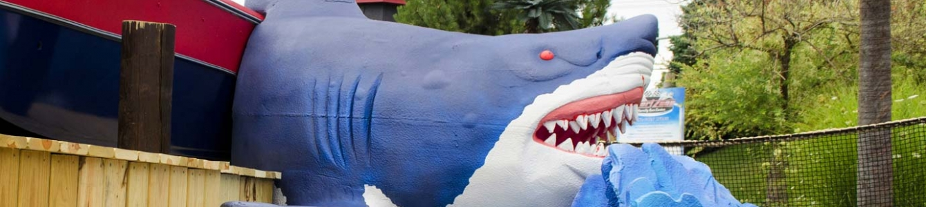 Shark Bite 19th Hole!